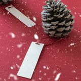 Winter decoration. Two pine cones with labels, on red background. Winter decoration. Two pine cones with labels, on snowy red background stock images