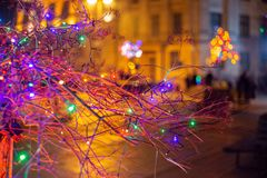 Winter decorations in the city. Bulbs, trees. royalty free stock photography