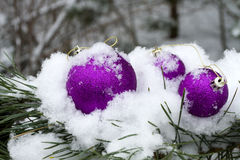 Winter Decorations on outside Stock Photography