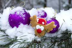 Winter Decorations on outside Stock Photos