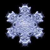 Winter decorative snowflake on black background Stock Image