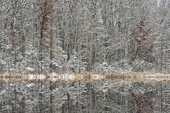 Winter, Deep Lake Reflections Royalty Free Stock Images