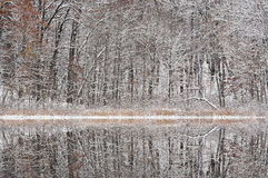 Winter, Deep Lake Reflections Stock Images