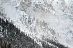 Winter in den Alpen, schneebedeckte Landschaft stockfotografie