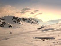 Winter in den Bergen Stockfotografie