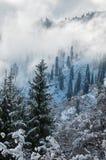 Winter in den Bergen stockbilder
