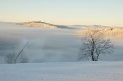 Winter in den Bergen stockfotos