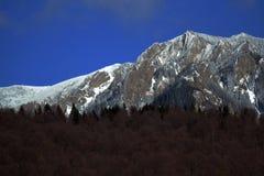 Winter in den Bergen CiucaÅŸ Lizenzfreie Stockbilder