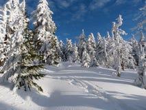 Winter in den Bergen, neues Jahr Lizenzfreies Stockbild