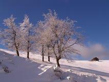 Winter in den Ciucas Bergen lizenzfreie stockbilder