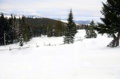 Winter in den Karpaten stockfotos