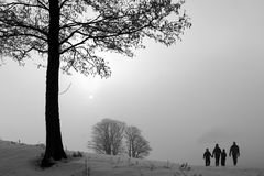 Winter in denmark Royalty Free Stock Photography