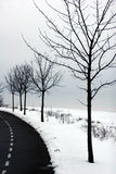 Winter in denmark Royalty Free Stock Photo