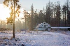 Winter, der in der Landschaft beklagt Stockbild