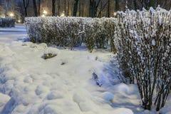 Winter in der Nachtstadt Stockbilder