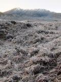 Winter an der Schlucht Garry, Schottland Stockbild