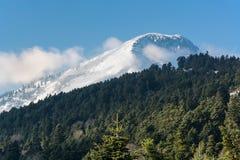 Winter an der Spitze des schneebedeckten Berges stockfotos