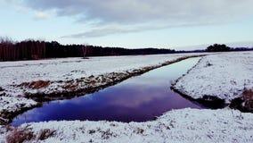 Winter in der Wiese Stockfotos
