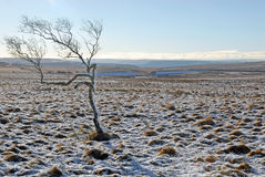 Winter in Derbyshire Royalty Free Stock Photography