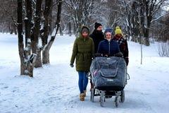 Winter des Gruppenwegs im Freien schneebedeckt stockfotografie