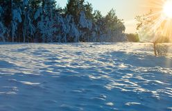 Winter desert Royalty Free Stock Photography