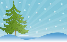 Winter design. Vector winter landscape with snowflakes and firtree Royalty Free Stock Image