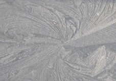 Free Winter Design Royalty Free Stock Image - 4788816