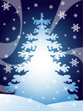 Winter design. With high detailed snowflakes, waves, and fir tree. Vector llustration Stock Images