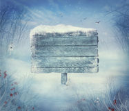 Winter design - Christmas valley with sign Royalty Free Stock Photos
