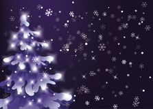 Winter night sky. snow is falling. Showfall. pine snowy tree with holiday lights Stock Image