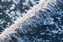 Winter details. Stock Photography