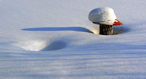 Winter details. A decorative mushroom with the snow-drifts Stock Photo