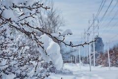 Winter die fairytale voor de schoonheid van de sneeuwstormaard de zorgen Stock Foto's