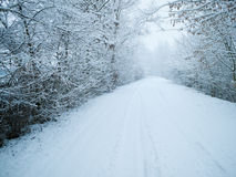 Winter dirt road Royalty Free Stock Images