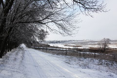 Winter. Dirt road in country side Stock Photography