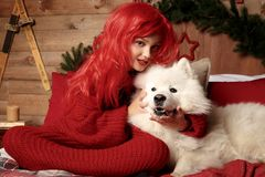 Winter dog holiday and Christmas. A girl in a knitted sweater and with red hair with a pet in the studio. Christmas. Woman with a beautiful face and pet. New royalty free stock photos