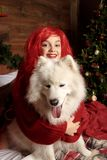 Winter dog holiday and Christmas. A girl in a knitted sweater and with red hair with a pet in the studio. Christmas. Woman with a beautiful face and pet. New royalty free stock photography