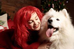 Winter dog holiday and Christmas. A girl in a knitted sweater and with red hair with a pet in the studio. Christmas. Woman with a beautiful face and pet. New royalty free stock image