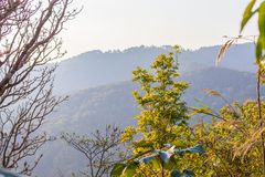 At Doi Pha Mee view point you can see Doi Nangnon in Maesai Chiang Rai shape of mountains look like women sleeping. In winter at Doi Tung Chiang Rai province stock photography