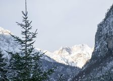 Winter on the dolomites Royalty Free Stock Image
