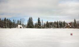 Winter-Dorfpanorama stockfoto