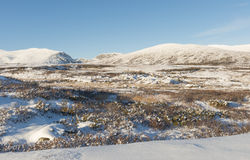 Winter Dovrefjell Hills Norway Stock Photos