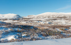 Winter Dovrefjell in Norway Stock Images