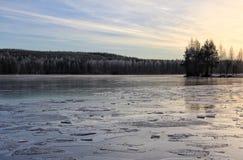 Winter draußen See-Eis-Wald stockfotografie
