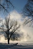 Winter Dream Series 6 royalty free stock images