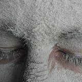 Winter dream Stock Photos