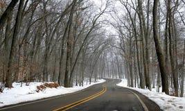 Winter Drive Way Stock Image