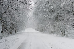 Winter Driving - Winter Road Royalty Free Stock Photos
