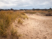 Winter dune landscape Royalty Free Stock Photo