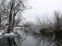 Winter durch den Fluss Stockbild
